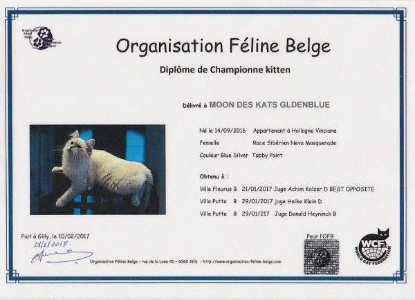 world cat federation